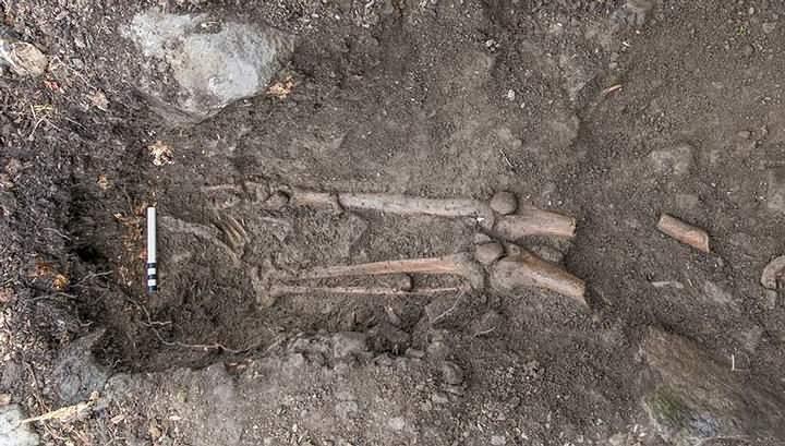 archaeology-sligo