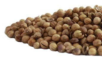 coriander_seed-product_1x-1403631116