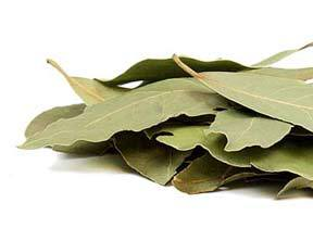 bay_leaf_whole-product_1x-1403630164