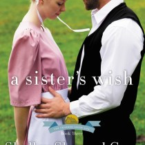 A Book Reveiw of Book 3 in A Charmed Amish Life Series by Shelley Shepard Gray