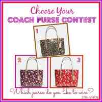 Choose your Coach Purse Giveaway 3/9 US