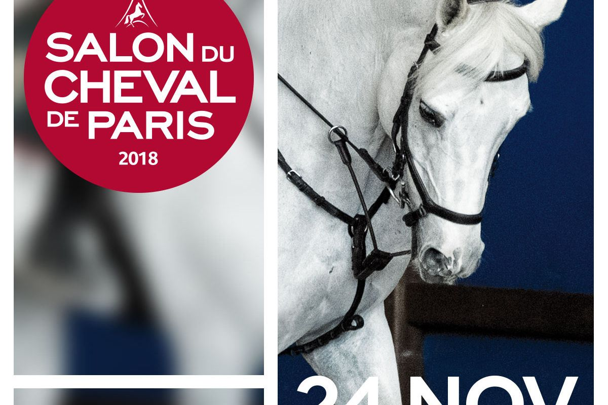 Salon Du Cheval A Paris Le Salon Du Cheval 2018 Au Parc Des Expositions Du Bourget à Paris