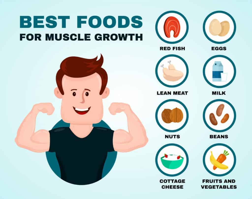 123 Top Cuisine Bulk Up With These 18 Best Foods For Muscle Growth Image