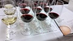 A flight of Australian wine