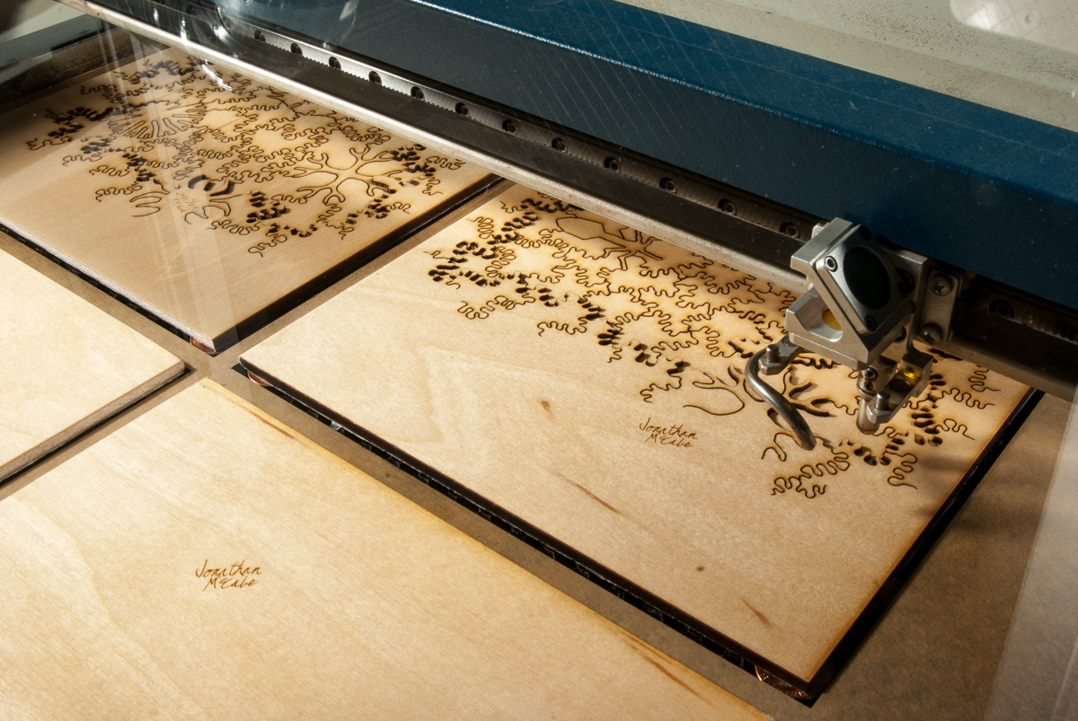 Nervous Systems Quest For The Best Laser Cutting Plywood