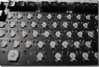 DSC_5401