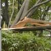 台風18号が再発達し、北海道で暴風による被害拡大 2004年9月