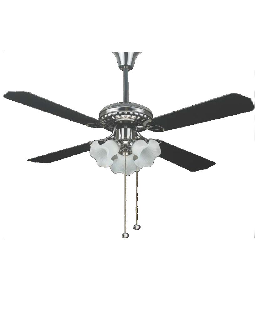 Black And Gold Ceiling Fan Warmex 1200 Mm Black Gold Crome Body And Black Blade Ceiling Fan
