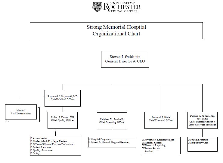 HEALTHCARE ORGANIZATION STRUCTURAL ANALYSIS n415son03 - hospital organizational chart