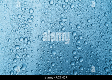 Water droplets on glass background Stock Photo 13067153 - Alamy - water droplets background