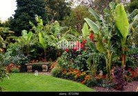 Tropical Garden Border Stock Photos & Tropical Garden ...