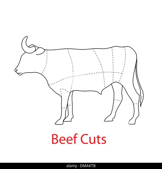 cow beef cut diagram