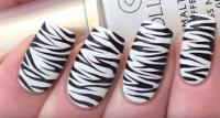 Zebra Nails: Easy Zebra Print Nail Art Tutorial | Nail Designs