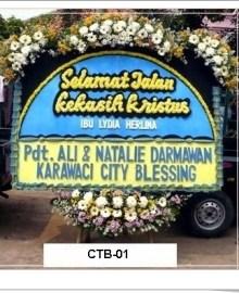 CTC01