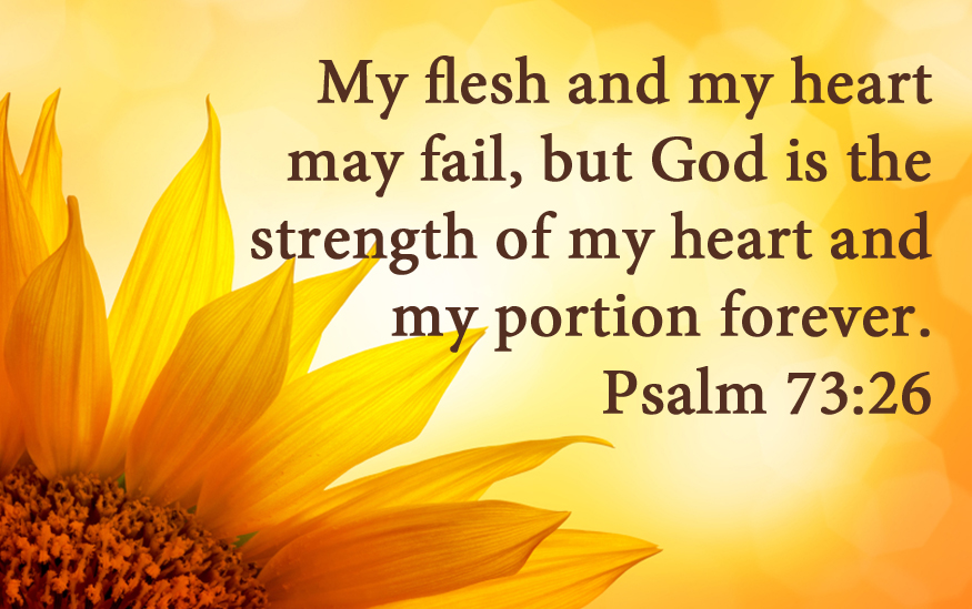 Free Fall Christian Desktop Wallpaper July 2014 From The Inside Out