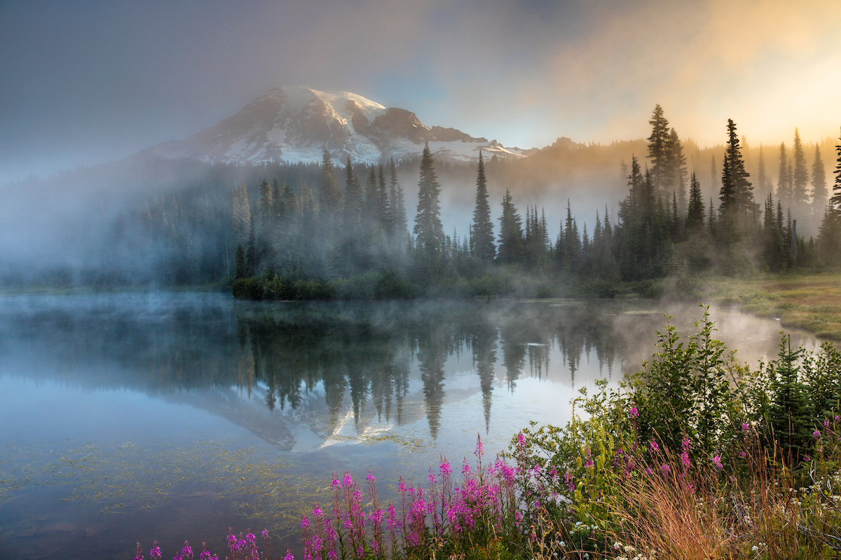 Art Wolfe Photo Tours Member Hosted Events Workshops Tours Nanpa North American
