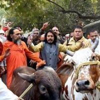 Gau rakshak goons attack Muslim family in Bengaluru