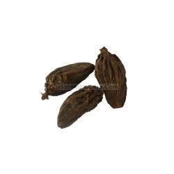 Badi_Eleichi_Motthi_Velche_Veldhoda_Big_Cardamom_Spices