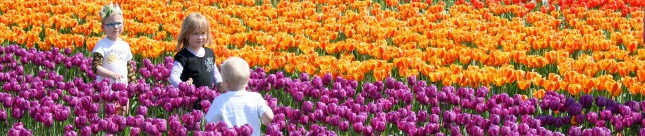 creative commons - kidsintulips