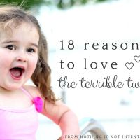 18 Reasons to Love the Terrible Twos