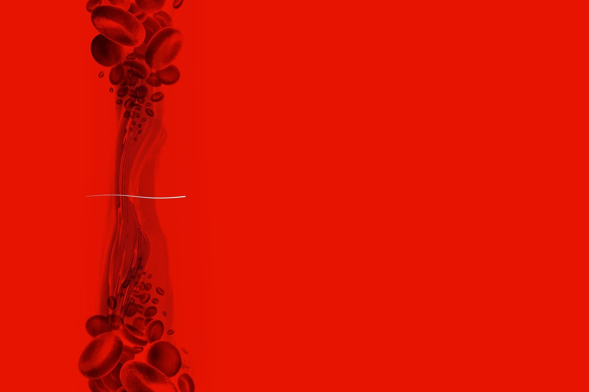 Vessl-banner - Natie Branding Agency