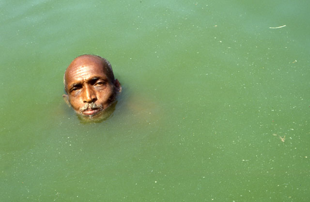 Spot Licht Head In Green Water | The National Arts Program Foundation