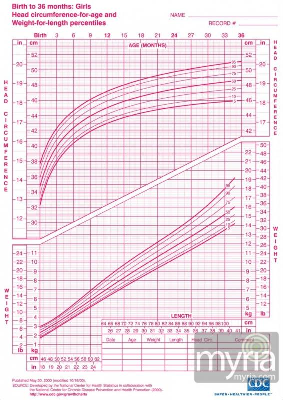 Baby Girl Growth Chart Template Business