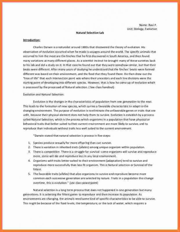 Chemistry Lab Report Template Template Business