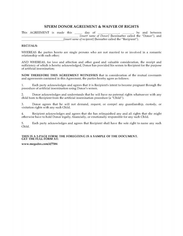 Custody Agreement Template Template Business - sample child custody agreement