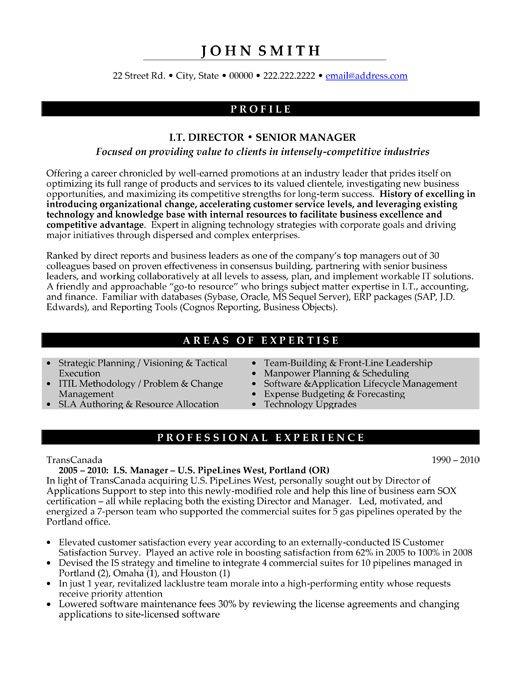 senior finance executive resume examples - Physicminimalistics