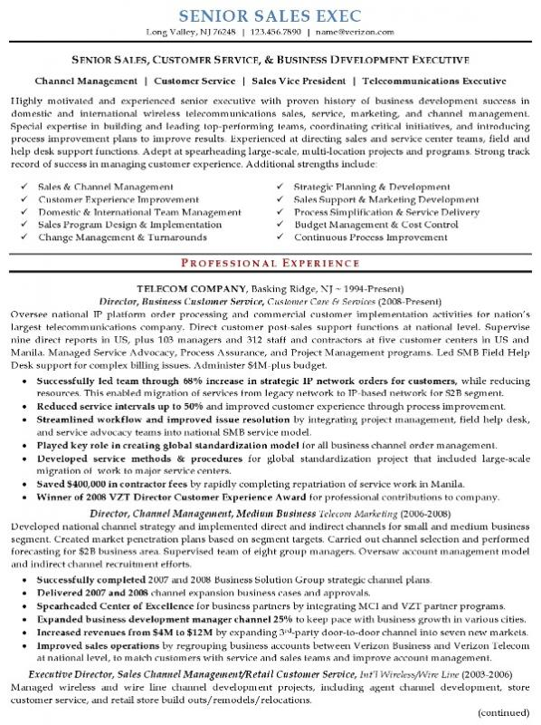 Executive Resume Samples Template Business