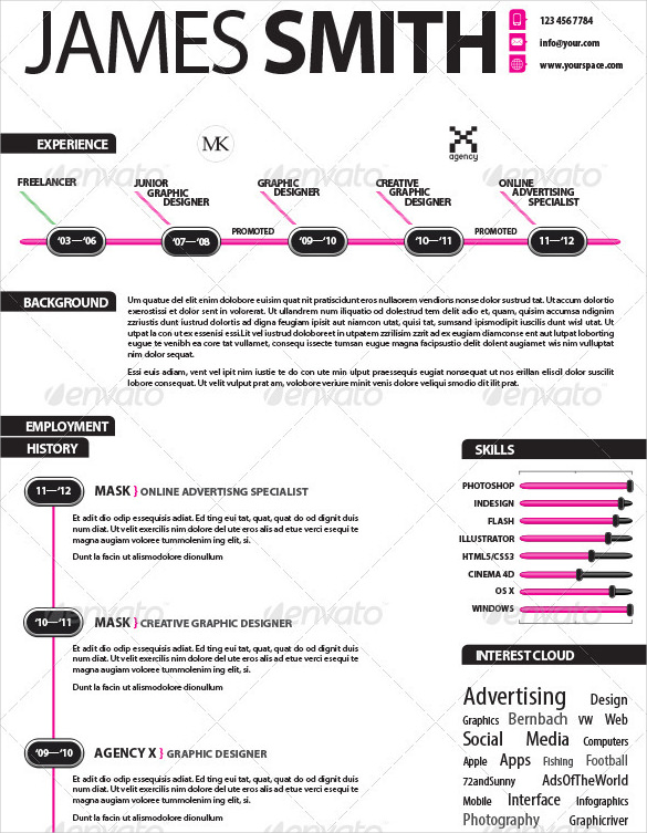 Infographic Resume Template Template Business