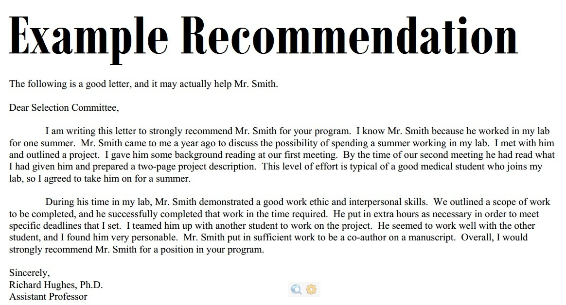 Letters Of Recommendation Example Template Business