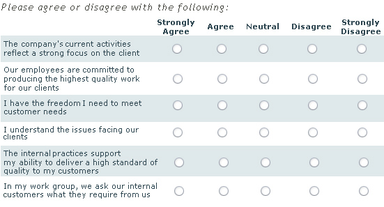 Likert Scale Questions Template Business - Likert Scale Template