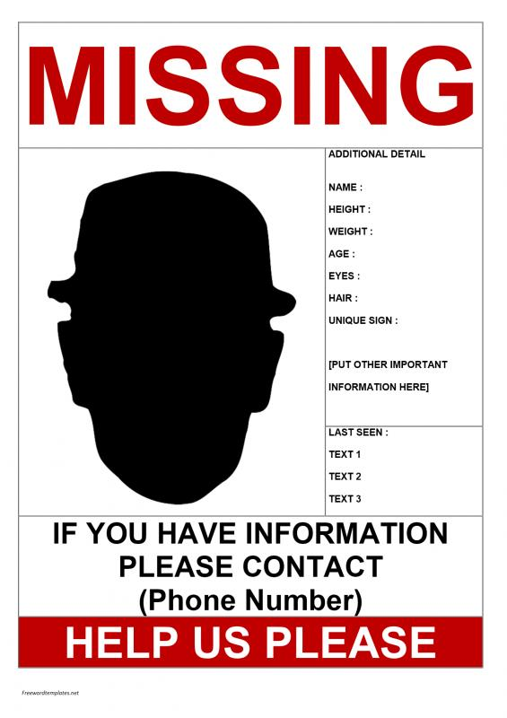 Lost Cat Poster Template Template Business - lost person poster