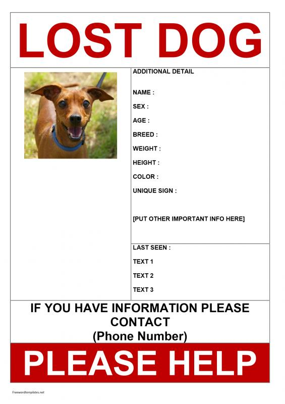 Missing Person Poster Example Free Word Templates Wanted Poster - Lost Dog Flyer Examples