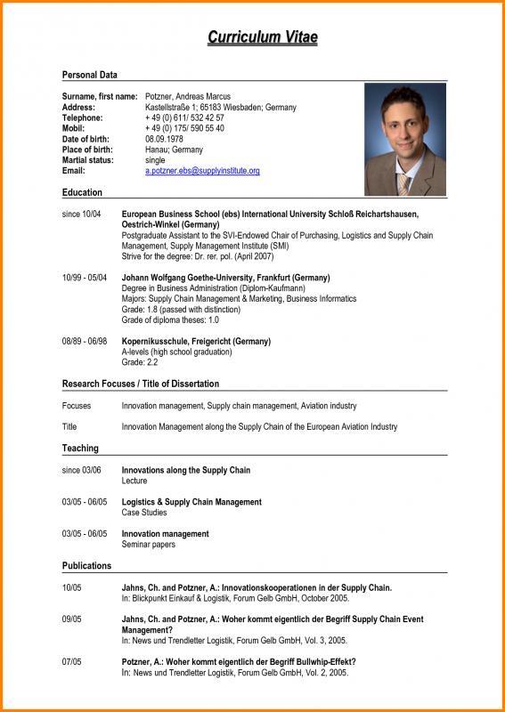 Pdf Resume Template Template Business - pdf resume template