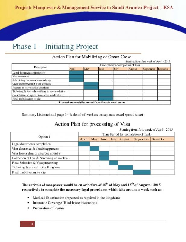 Project Summary Template Template Business