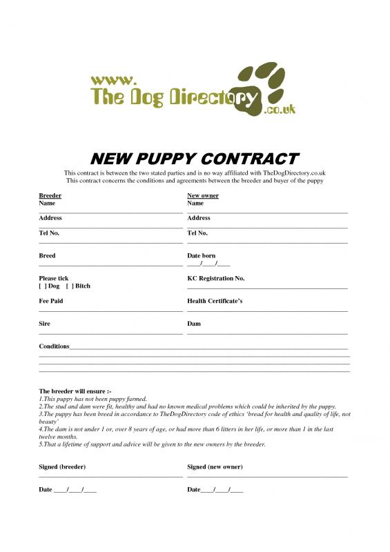 Puppy Bill Of Sale Template Business