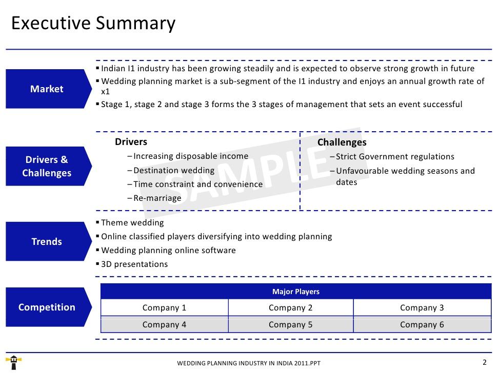 executive summary powerpoint example - Ozilalmanoof - project summary report sample