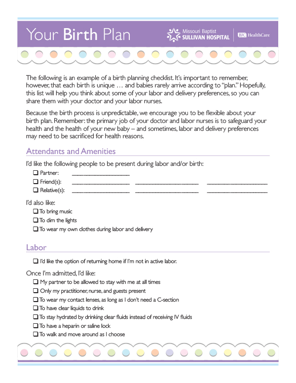 Sample Birth Plans Template Business