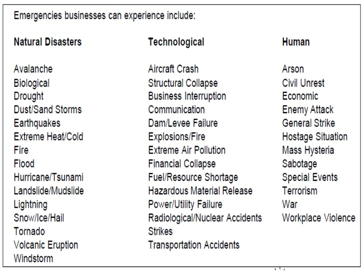 Sample Emergency Action Plan Template Business