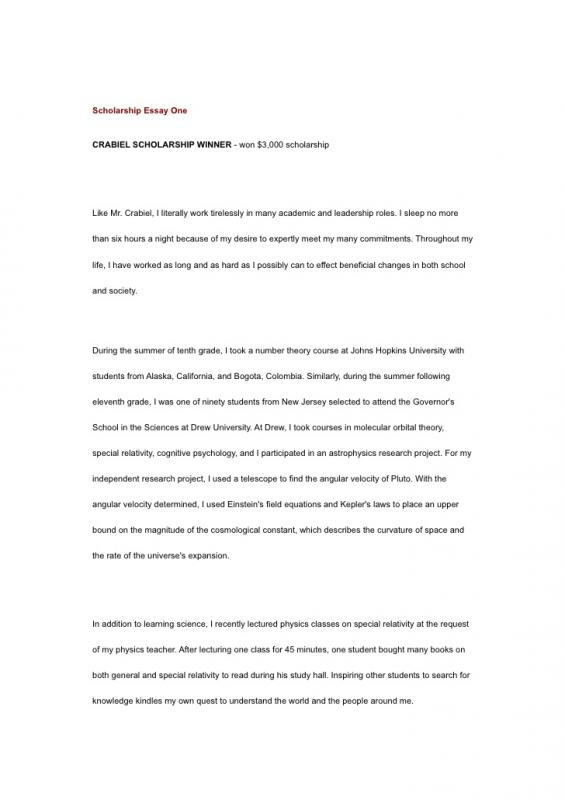 Sample Scholarship Essays Template Business