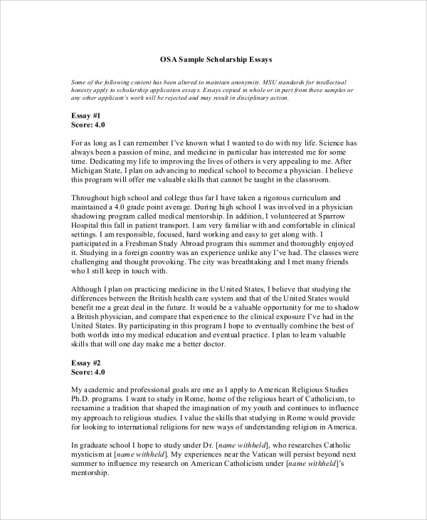 Scholarship Essay Samples Template Business