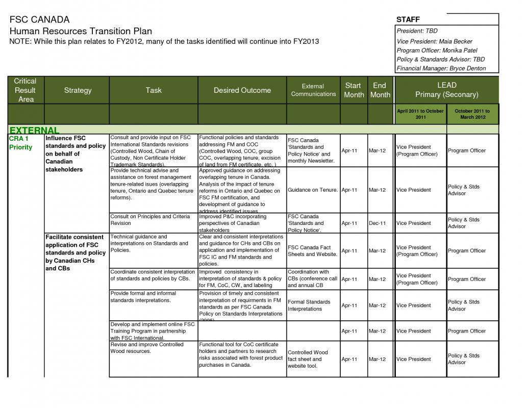 ceo transition plan template - 28 images - beautiful ceo transition ...