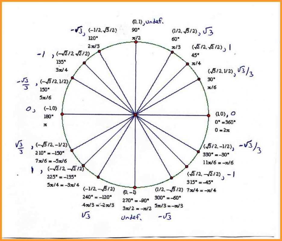 Unit Circle Template Template Business - circle template