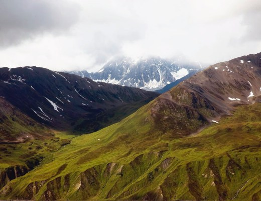 Alaskan tundra in Denali National Park, Alaska