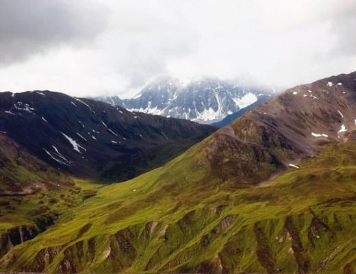 Alaskan tundra in Denali National Park, Alaska