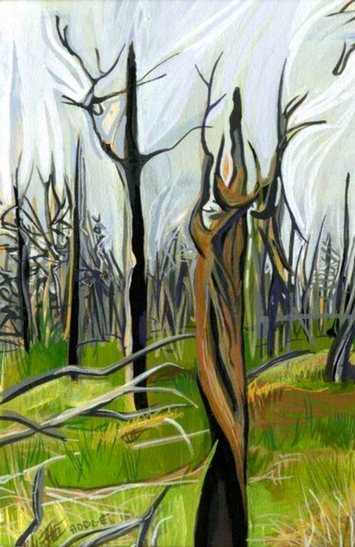 kathy_hodge_trees_mesa_verde