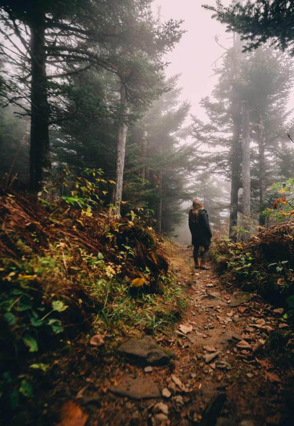hiking_appalachian_trail_silence_smoky_mountains_national_park_quest
